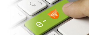 Protect eCommerce Website From Hackers