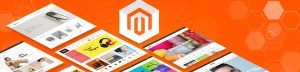 Build an eCommerce store on Magento
